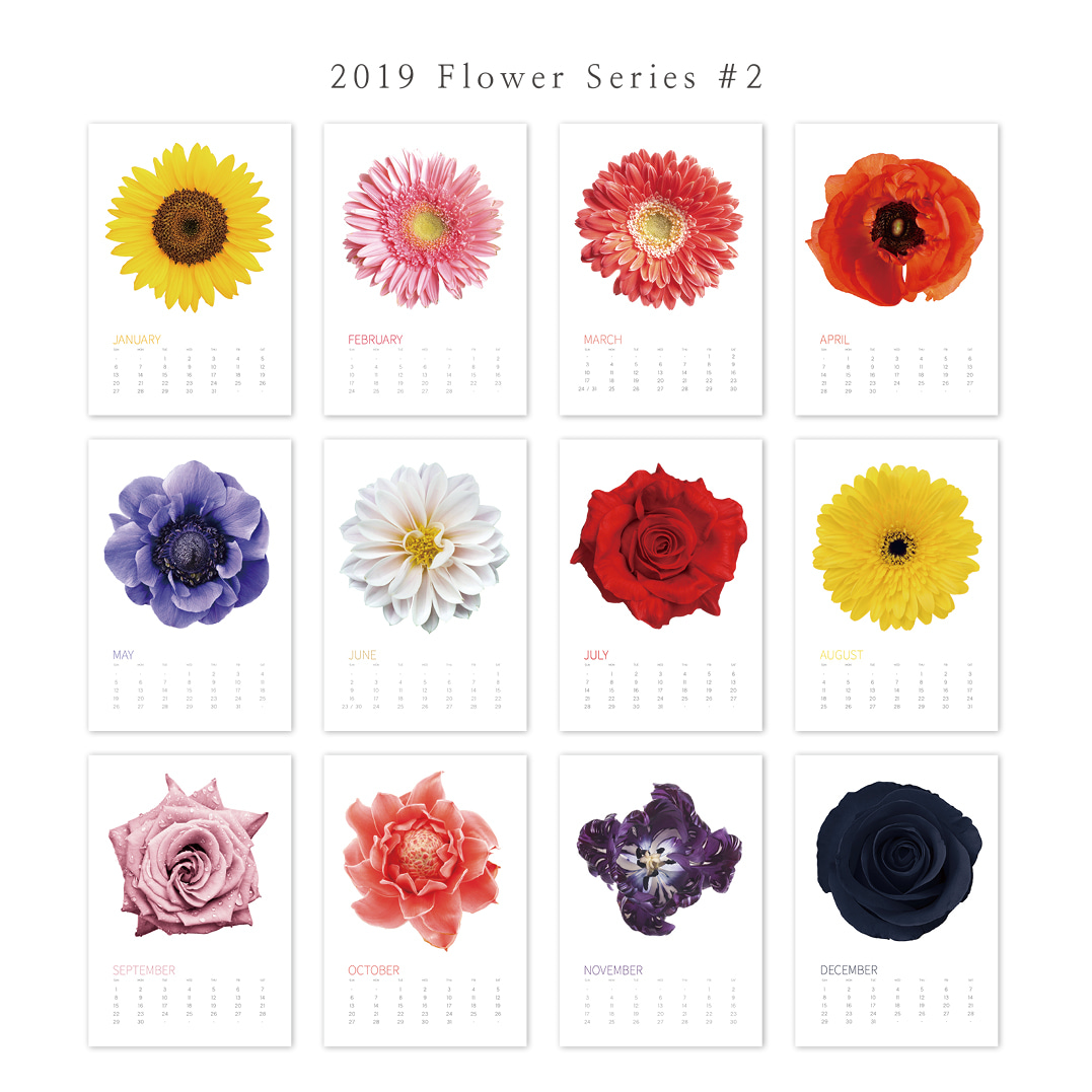 2019 아트 캘린더 달력 CALENDAR 38  Flower Series 2
