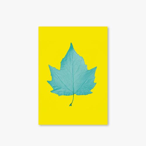 아트커버 디자인 노트 Garden Series Type D Leaf 2