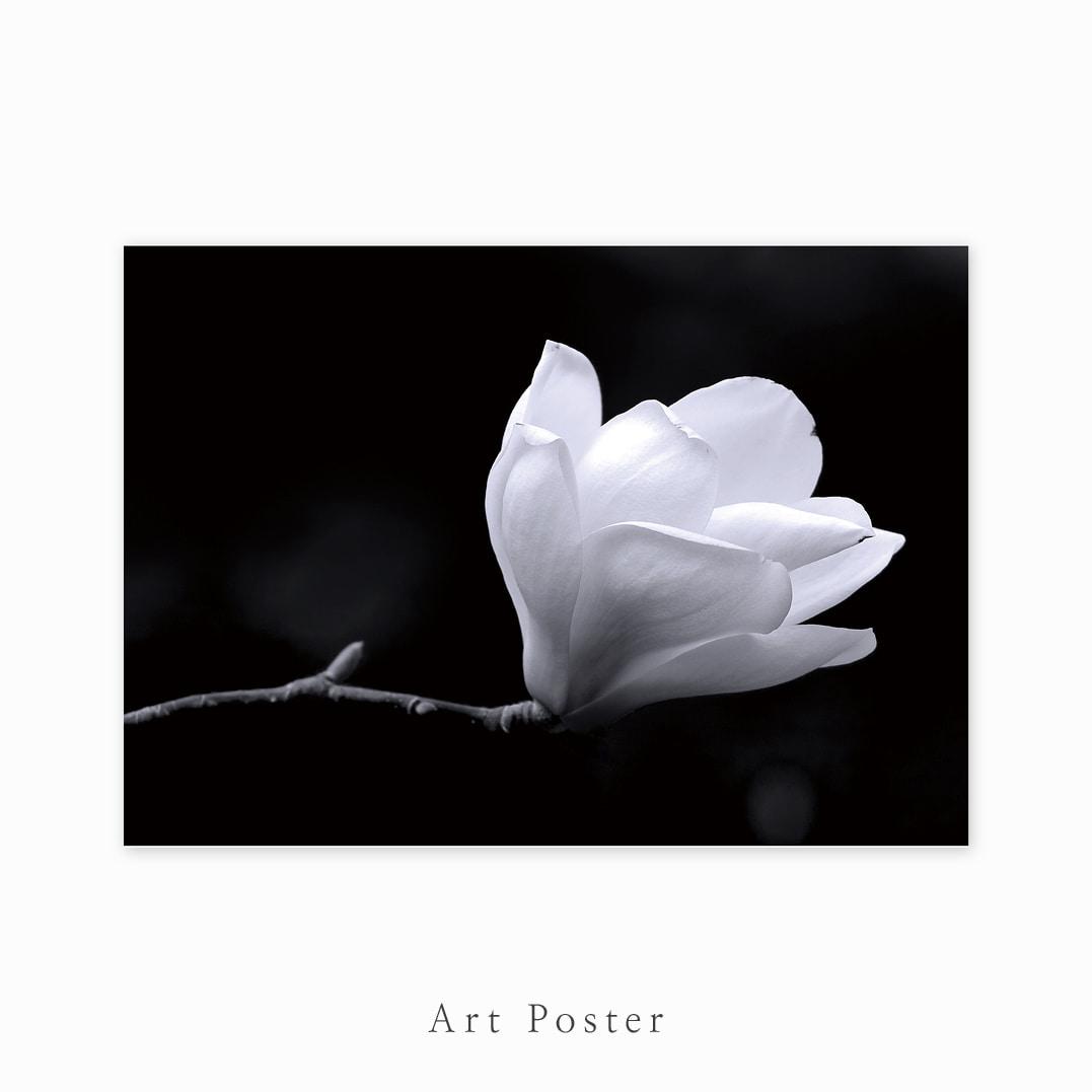 ART Poster_157