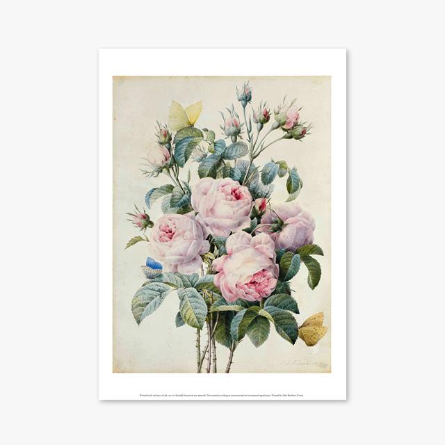(플라워 아트 포스터) Flower Series ART Poster_1059