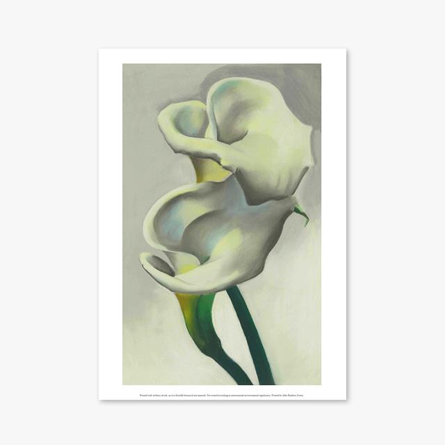 (플라워 아트 포스터) Flower Series ART Poster_1290