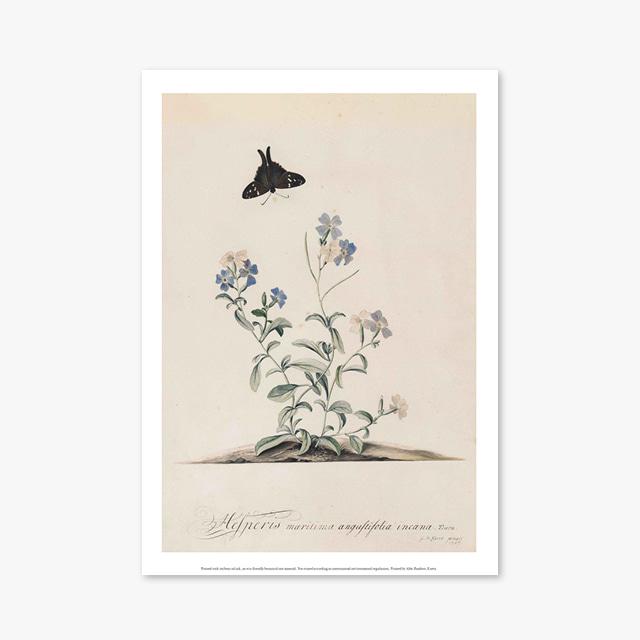 (플라워 아트 포스터) Flower Series ART Poster_1297
