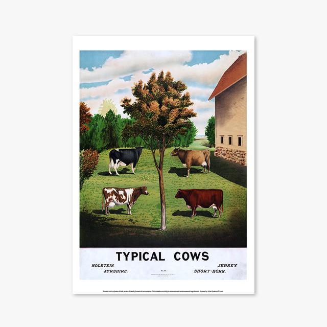 빈티지 아트 포스터 1175 Vintage Art Posters