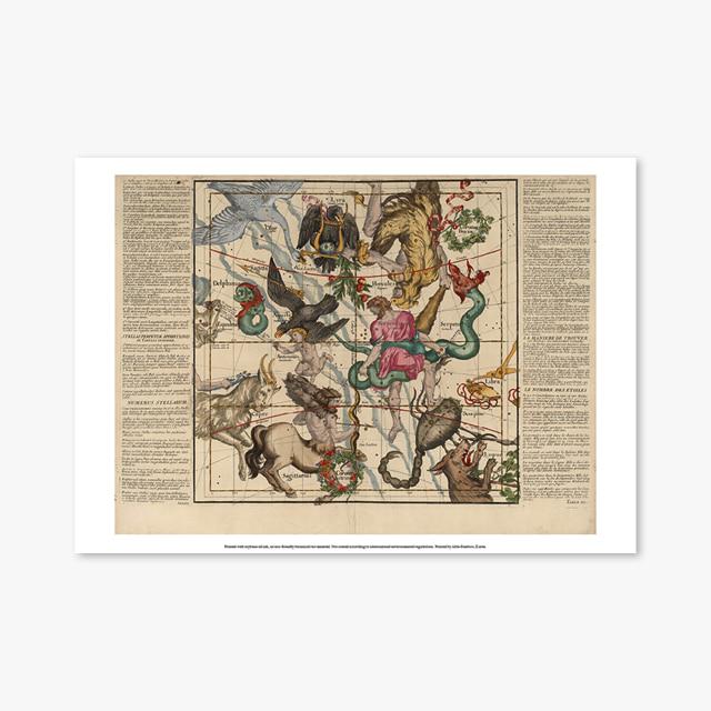 924_Vintage Art Posters_Ignace_Gaston_Pardies-Plate_5 (빈티지 아트 포스터)